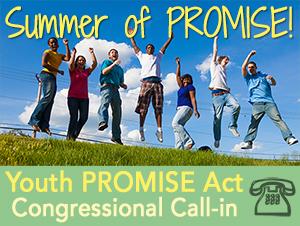 Summer-of-PROMISE-logo6